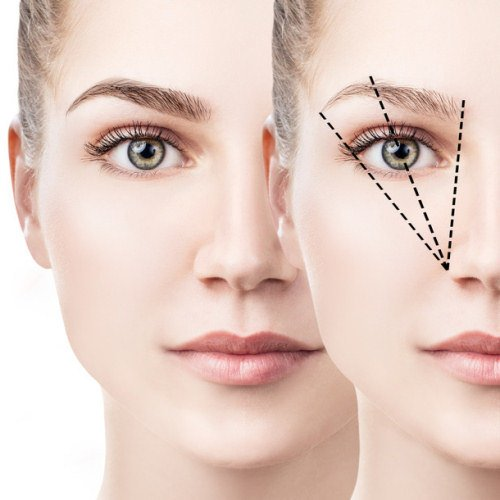 Scientific research on the perfect brow shape